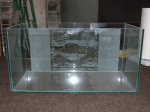 AJ Creative Glass - Fishtank (1)